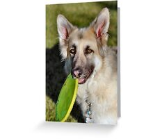 You want to toss it...gotta catch me first! Greeting Card