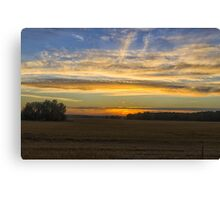 Field. Evening. Sun. Canvas Print