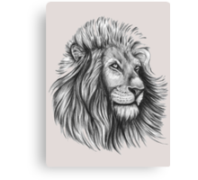 Lion. Canvas Print