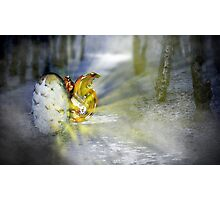 Fairy Born Photographic Print