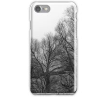 Village iPhone Case/Skin