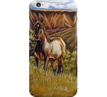 Up From The Canyons iPhone Case/Skin