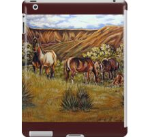 Up From The Canyons iPad Case/Skin
