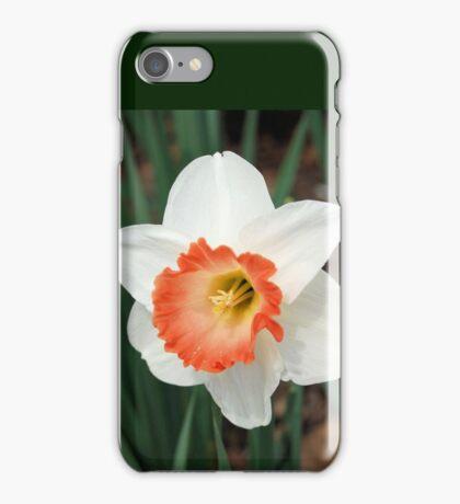 One White Daffodil iPhone Case/Skin
