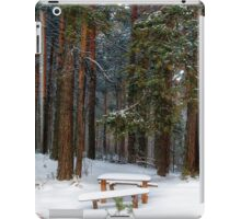bench in winter forest iPad Case/Skin