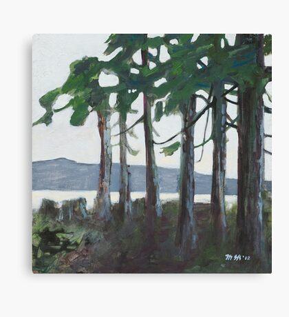 Tofino View  Canvas Print