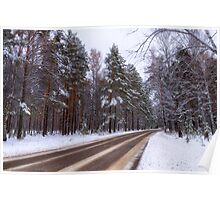 Winter. Forest. Road. Poster