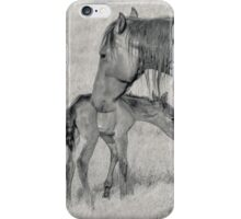 Spring Foal iPhone Case/Skin