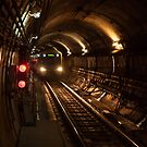 1180 In the Tunnel by DavidsArt