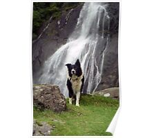Indy at Aber Falls Poster