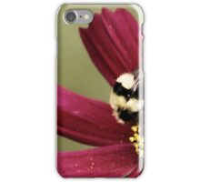 Bee Feast iPhone Case/Skin