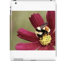 Bee Feast iPad Case/Skin