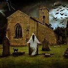 The Ghost in the Graveyard by Ann  Van Breemen