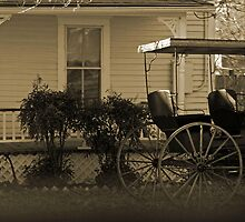 Old house and wagon by Dwellsphoto