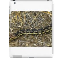 Pacific gopher snake iPad Case/Skin