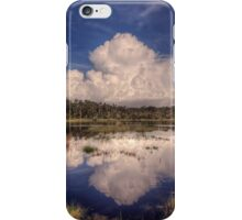 Reflections of the Florida Wetlands iPhone Case/Skin