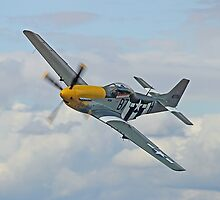 P51 Mustang Ferocious Frankie - Dunsfold 2014 by Colin J Williams Photography