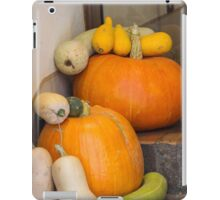 pumpkin in the garden iPad Case/Skin