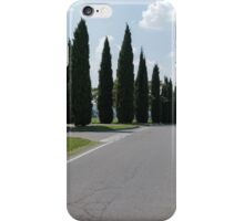 avenue iPhone Case/Skin