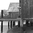 China Camp Black & White by Scott Johnson