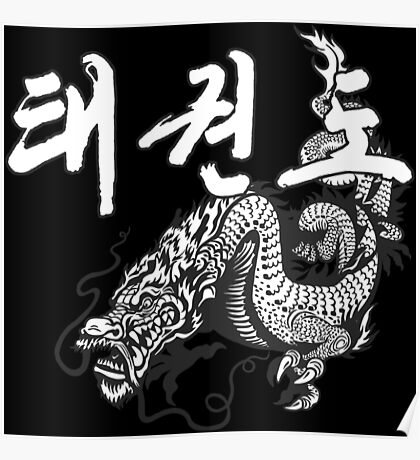 Taekwondo Dragon 2  korea martial art Poster