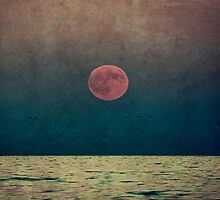 harvest moon rising by paulgrand