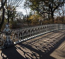 Whimsical Shadows - New York City Central Park Bridge by Georgia Mizuleva