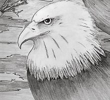 Eagle drawing by Richie Montgomery