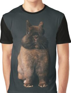 Netherland Dwarf Rabbit - Tort on black / bunny show arba breed tortoiseshell cute Graphic T-Shirt