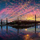 Good Morning Ryde by manateevoyager