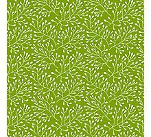 Floral green seamless pattern Photographic Print