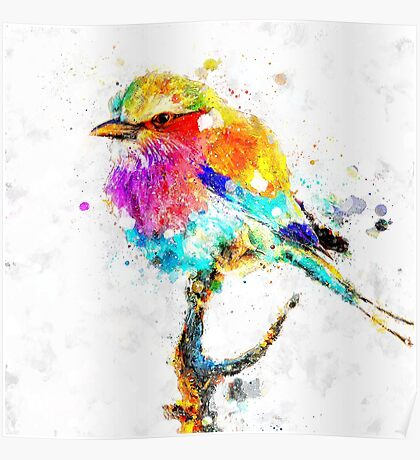 Artistic - IV - Colorful bird Poster