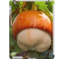 a beautiful pumpkin iPad Case/Skin