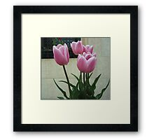 City Still Life Framed Print