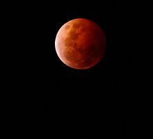 Blood Moon - Eclipse by DimondImages