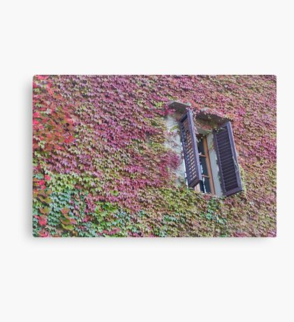 window of the house Canvas Print