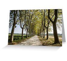 Sauternes,  a road between vineyards  Greeting Card