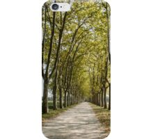 Sauternes,  a road between vineyards  iPhone Case/Skin