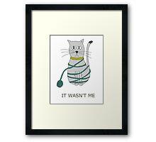 Guilty cat  Framed Print