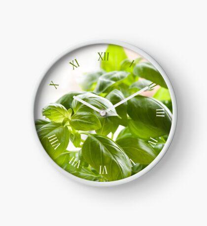 Fresh basil foliage on windowsill Clock
