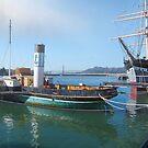 Aquatic Park Ships by David Denny