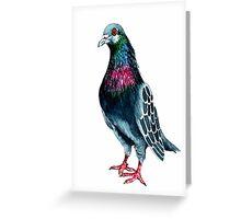 Seymour the pigeon Greeting Card
