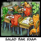 Salad Bar Exam  by Rick  London