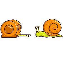 Snail Mate Photographic Print