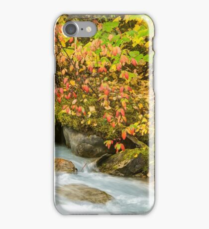 Robson River iPhone Case/Skin