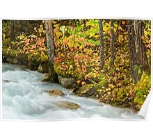 Robson River Poster