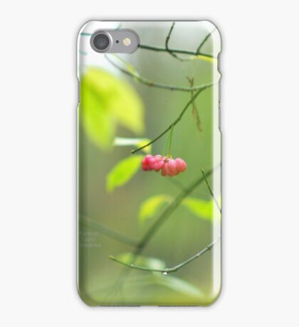 """"""" Soft Colours Of Winter """" iPhone Case/Skin"""