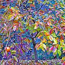 The Persimmon Tree by Eileen McVey