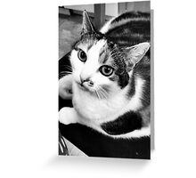 Buffy in Black and White Greeting Card