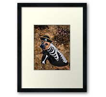 Really Now~Do I look Like Im In Disguise Framed Print